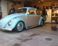 64 european bug