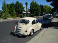 Bought Cheap 67' Bug last year