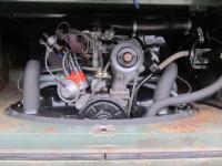 66 Velvet Standard