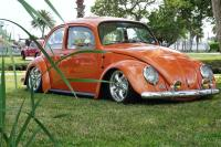 low 66 bug