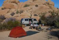 Joshua Tree Camping