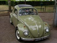 bertjans bug almost finished