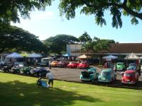 Vintage Vw club of Hawaii    Bugs in the Park