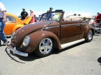 sac bug-o-rama may 2011