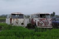 Auction buses