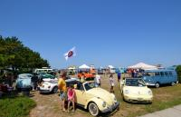 Bugs and Buses By Barnegat Bay 2011