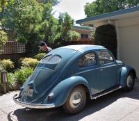 My 1952 Split window Beetle