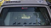 Rear Window Stickers