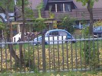 VW Spotting!