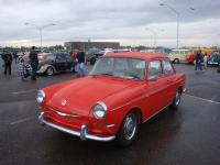 Red Notchback