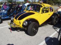 Wasp Baja