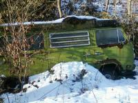 Bay window bus in woods