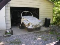 71 Beetle For Kids Play Prop