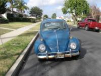 1965 VW Bug