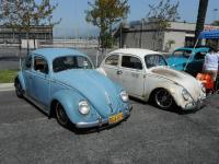 RHD Oval-Window Beetle
