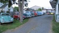 1965 standard microbus as well as a few others in my driveway