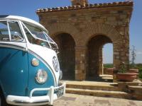 Bluebonnet bus