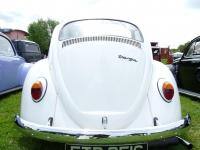 Targa Bug