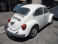 Gene Berg Bug