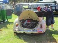 VW Jamboree