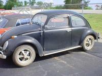 '63 bug
