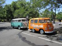 Tillamook Cheese Buses Concord, Ca. 2010