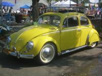 Yellow 57 Beetle