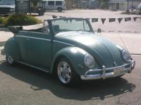 55 Beetle vert