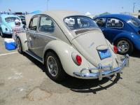 bug-o-rama may 2012