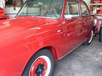 Ruby Red Notchback